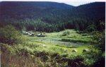Agrarian Grrl's farm